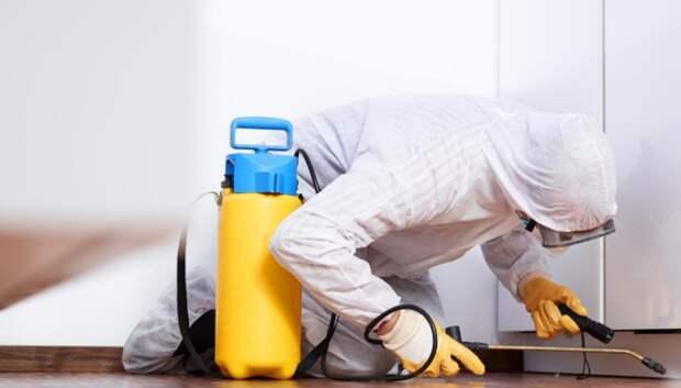Входы в дома и лифты начнут дезинфицировать в Подмосковье из‑за Covid‑2019 с понедельника