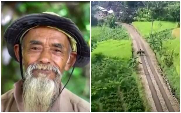 Мужчина 20 лет в одиночку сажал деревья, превращая бесплодные земли в оазис