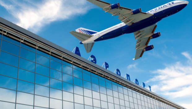 В аэропортах Московского региона за неделю спасатели встретили свыше 1,5 тыс прилетевших