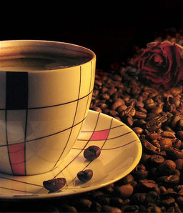Продажа свежеобжаренного кофе, кофе в зернах оптом