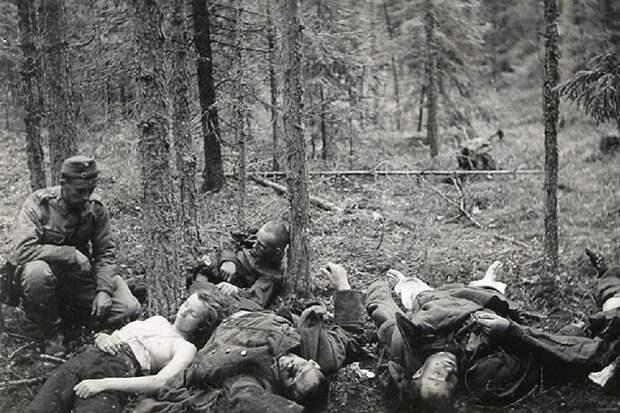 В чём причина жестокости финских захватчиков в Карелии?