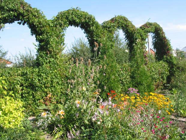 Самодеятельные сады - воплощение неуемной жажды творчества садоводов-экспериментаторов