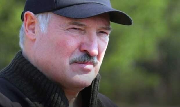 Лукашенко заявил, что колючая проволока не остановит людей на границе РФ и РБ