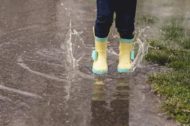 Дожди и грозы пройдут в Удмуртии в понедельник