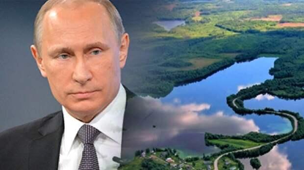 Юрист из Карелии предложил Путину применить опыт «азиатских тигров» в борьбе с коррупцией