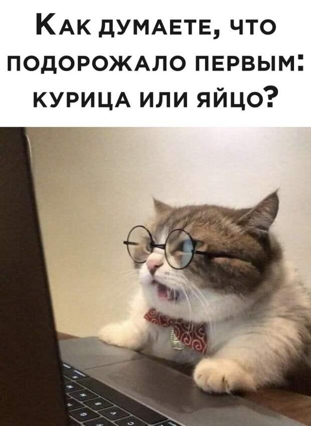 Подборка картинок. Вечерний выпуск (30 фото) - 08.03.2021