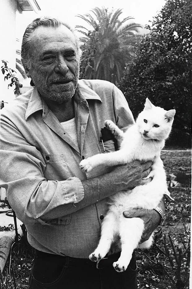 Чарльз Буковски: «Я болел за кота – мне тоже досталось от жизни, не так как ему, но всё же…»
