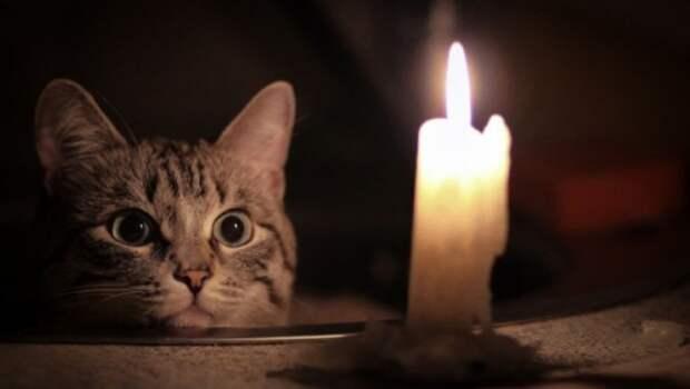 Жители «Остряков» остались без света (АДРЕСА)