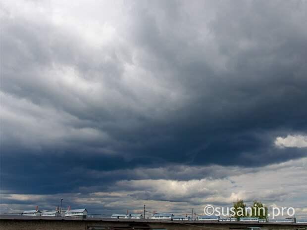 Очередное усиление ветра придет в Удмуртию