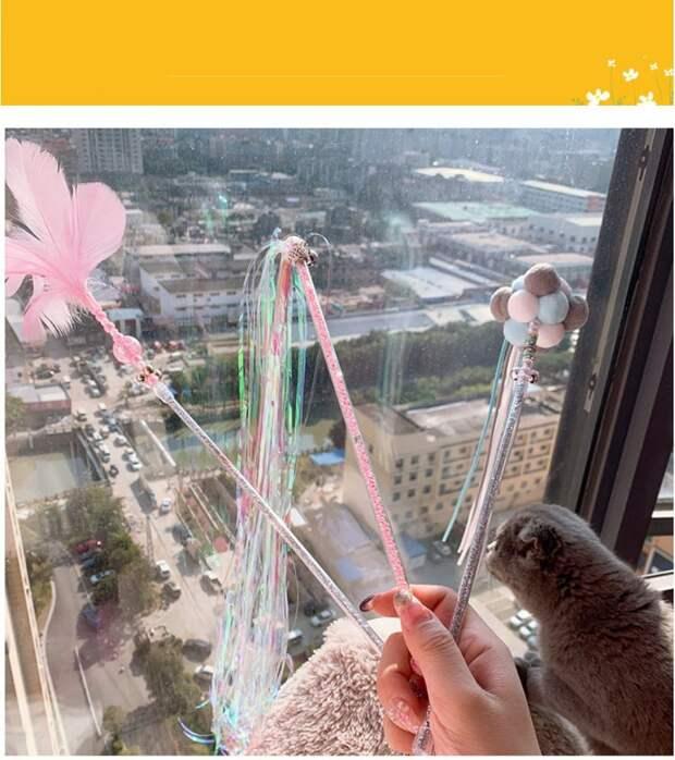 9 классных товаров с Алиэкспресс для вашей кошки