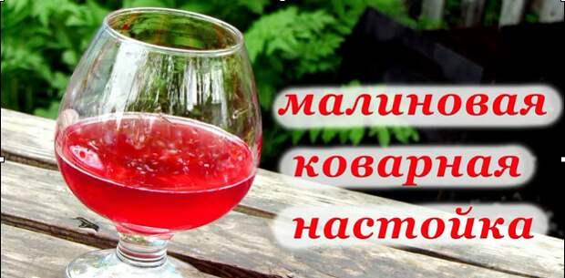 Спиртные напитки. Малиновая коварная настойка