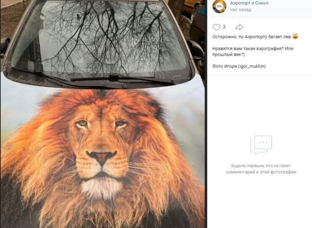 Фото дня: «лев» на четырех колесах в Аэропорте