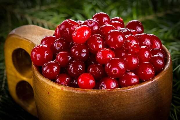 Зимний витамин. Пять причин есть клюкву каждый день