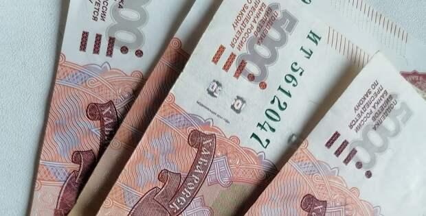 Председатель думы Братска Лариса Павлова предложила создать экологические фонды