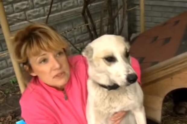 Несчастную собаку пытались утопить, привязав ей на шею мешок с щенками!