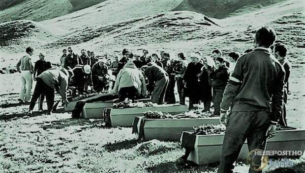 Пленницы вершины: трагедия на Памире