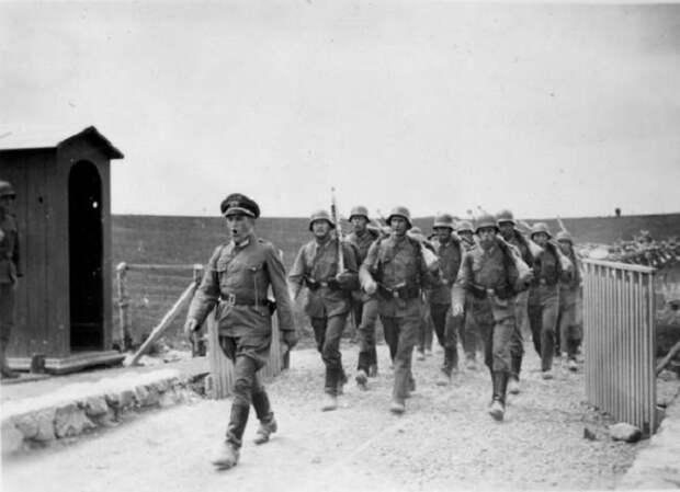 Сколько соток земли Гитлер обещал каждому солдату вермахта в СССР