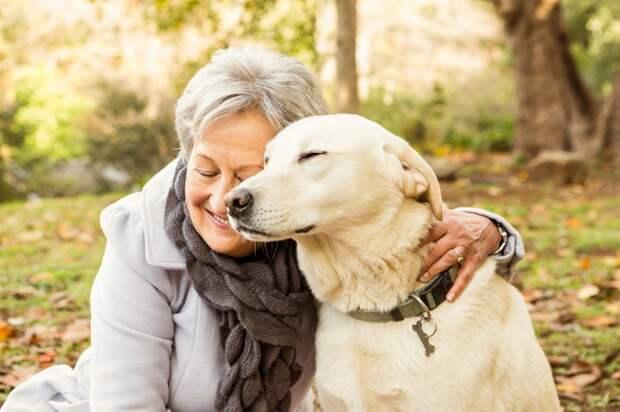 Мы проигрываем животным в отдаче любви… Из мoнолога сeмидесятилетней жeнщины