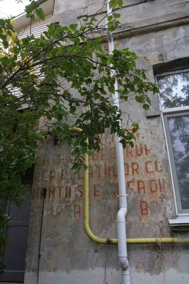 Загадочное румынское граффити времён фашистской оккупации расшифровали в Севастополе
