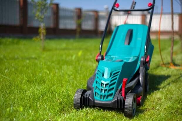 Как правильно стричь и косить газон