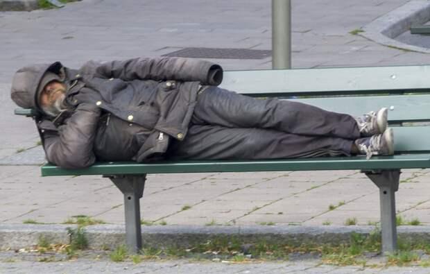 Развожаев оставил улицы города бездомным