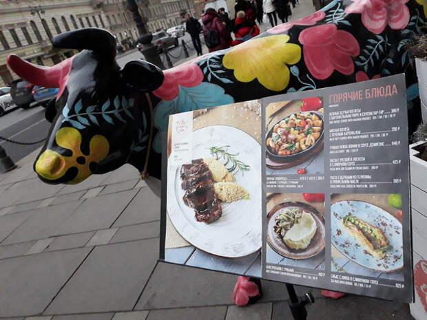 Хотел как лучше: повара с меню в руках возле здания администрации посчитали одиночным пикетом