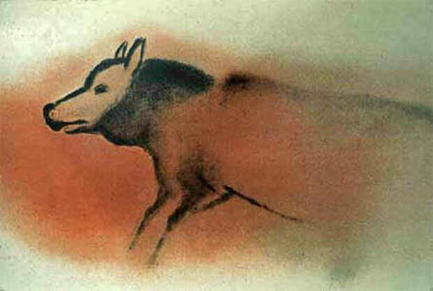 Изображение волка, найденное в пещере Фон-де-Гом вместе с другими наскальными рисунками эпохи позднего палеолита.