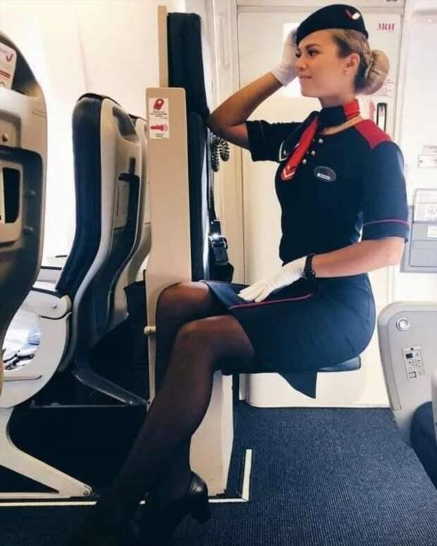 Ножки стюардесс. Подборка chert-poberi-styuardessy-chert-poberi-styuardessy-33360108022021-9 картинка chert-poberi-styuardessy-33360108022021-9