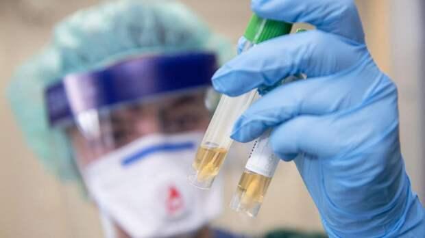 Sohu: Создание вакцины от коронавируса можно сравнить с «ядерной гонкой»