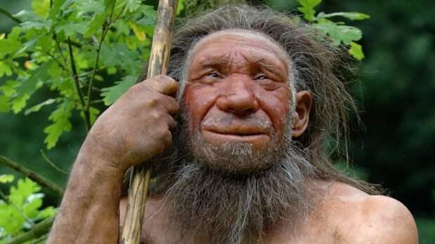 Последнее исследование учёных демонстрирует гибкость мышления неандертальцев.