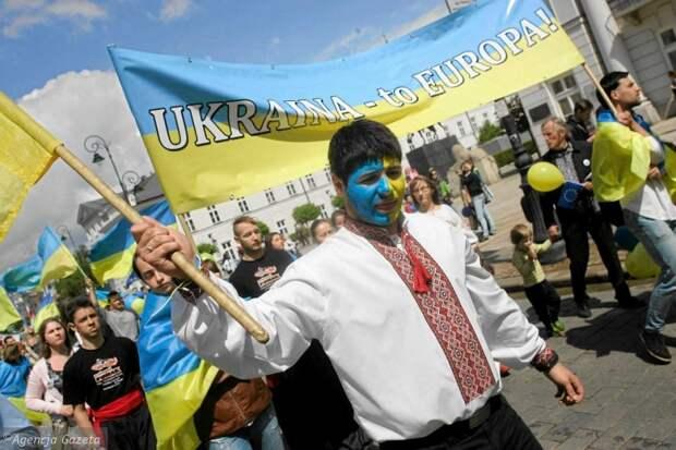 Украина ввела новые санкции против РФ и пересела на лошадей