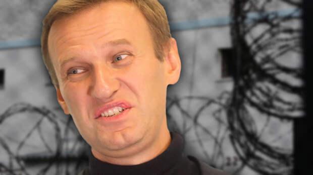 Восемь томов и гостайна: Дело Навального и Волкова получило новый поворот