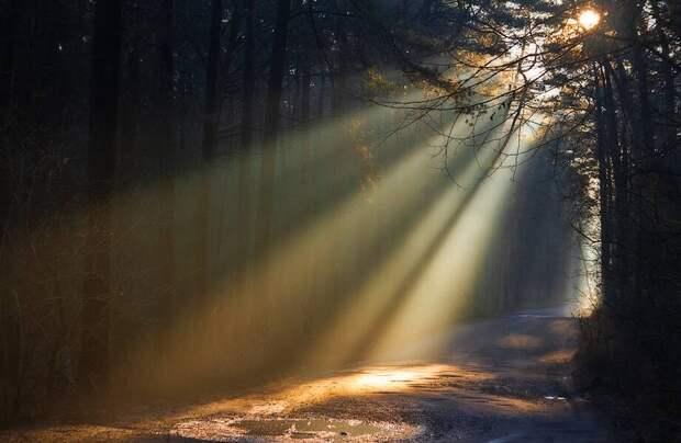 Ученые нашли способ, как сделать так, чтобы свет проникал через вещества