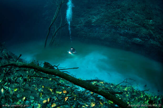 Удивительные фотографии мрачной реки в Мексике, которая протекает под другой рекой