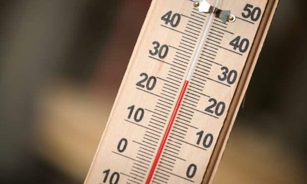 Температура растет. |Фото: twitter.com.