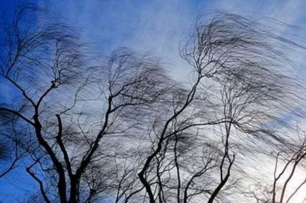 Красноярцы публикуют фото последствий шквалистого ветра