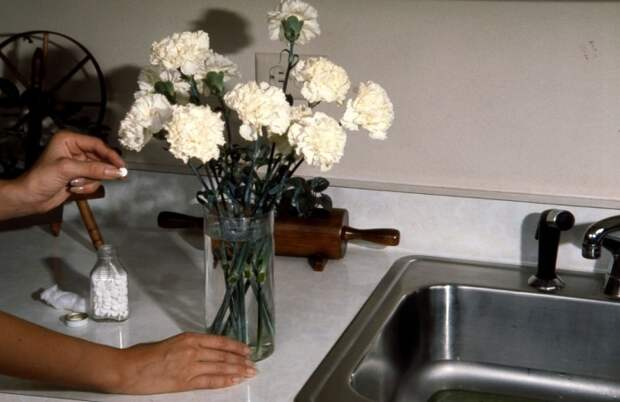Аспирин препятствует гниению и дезинфицирует воду / Фото: stroimsami.online