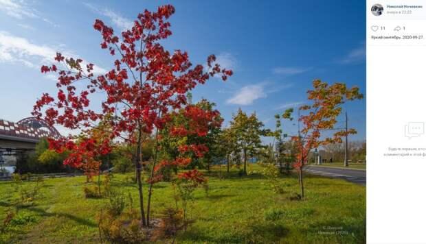 Фото дня: яркий сентябрь