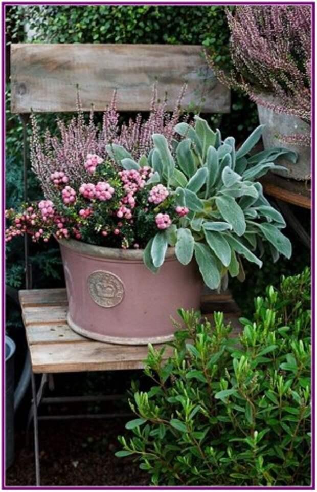 Замечательные идеи, как украсить участок цветами в красивых вазонах
