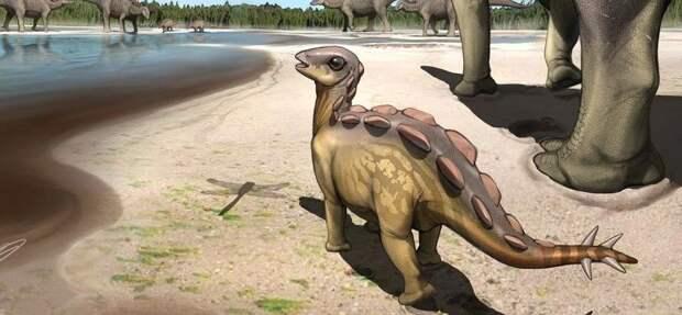 Палеонтологи нашли в Китае самый маленький след стегозавра