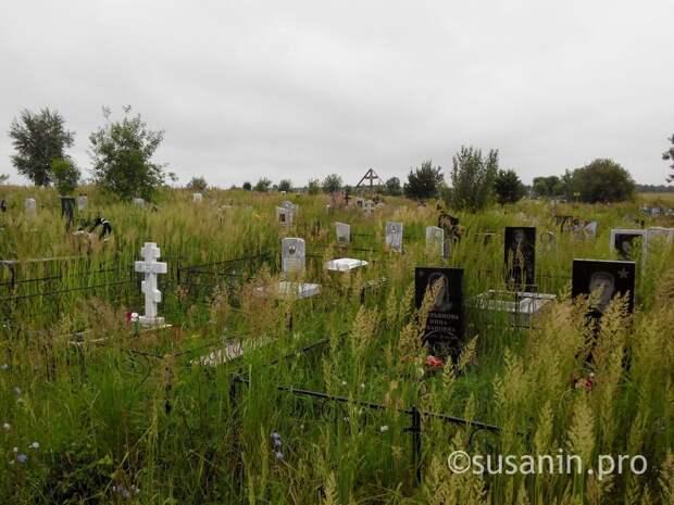 Кладбища Ижевска будут открыты только для погребения