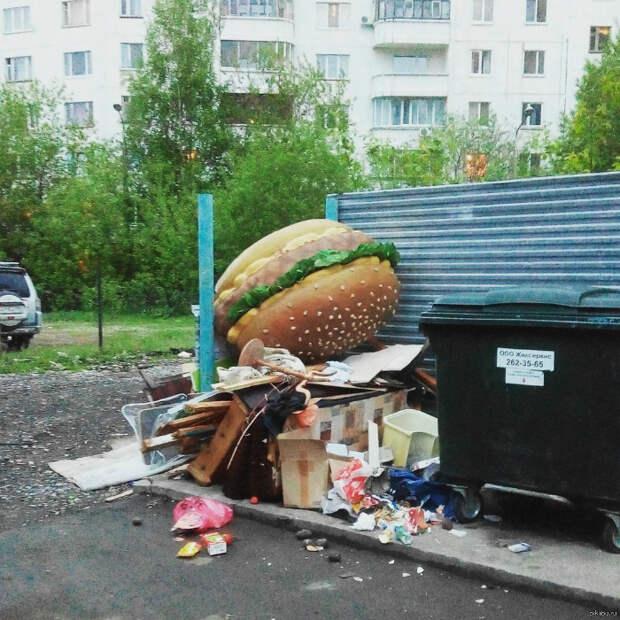 Больше никаких бургеров!   Фото: Пикабу.