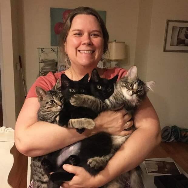 женщина держит четырех котов