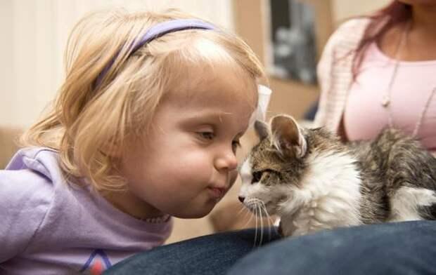 Котенка с тремя лапками приютила двухлетняя девочка без руки – между малышами возникла особая связь