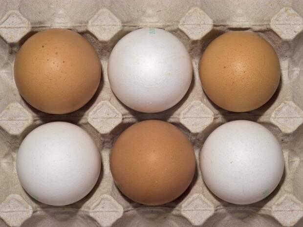 В Минпромторге объяснили рост цен на куриные яйца в РФ