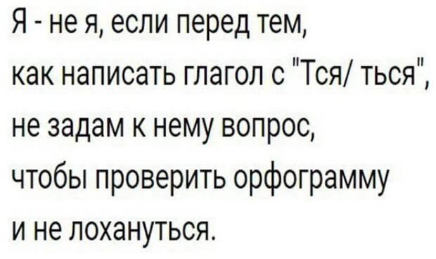 "83-летний участник телевизионной передачи ""Давай поженимся"" выбрал ту бабушку..."