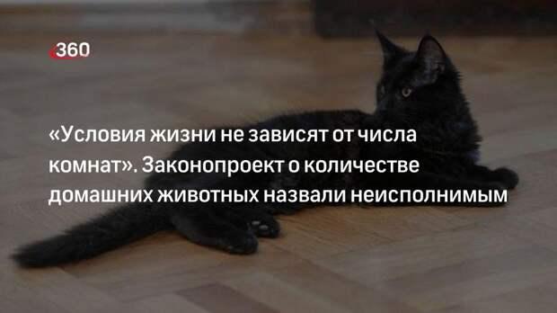«Условия жизни не зависят от числа комнат». Законопроект о количестве домашних животных назвали неисполнимым