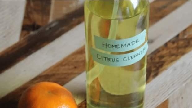 Из апельсина можно сделать чистящее средство. /Фото: user91122.clients-cdnnow.ru