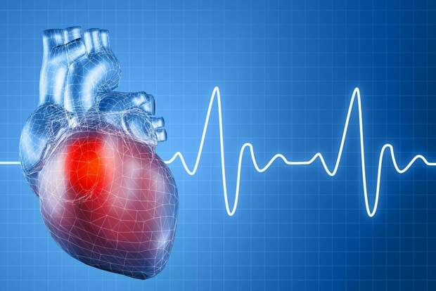 Как привести сердечный ритм в норму