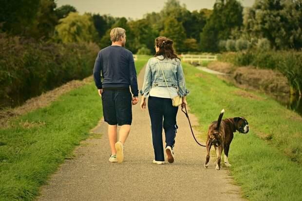 15 простых приемов, которые позволяют легко завоевывать любовь окружающих